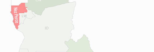 Nez Perce County Map
